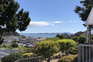 Sea View Kiwi