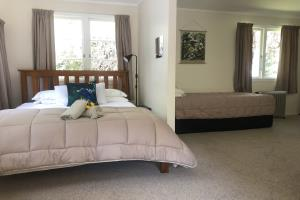 Open plan with Queen bed and two Single beds.