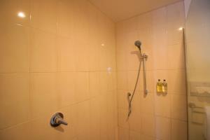 Studio Spa Bathroom view of Shower