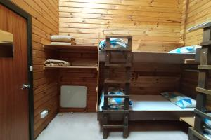 Bunk Bed in a Mixed Dorm