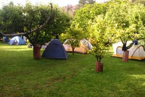 Campsite per person