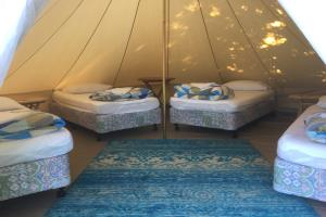 Single bed in shared glamping tent
